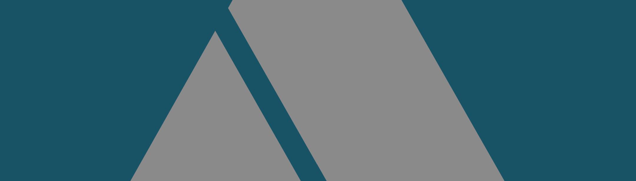 About Agilon Digital
